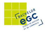 EGC Bachelor Responsable en marketing, commercialisation et gestion