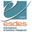 ESDES Lyon programme en 3 ans