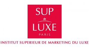 Logo Ecole Sup de Luxe